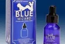blue-wizard-1.jpg